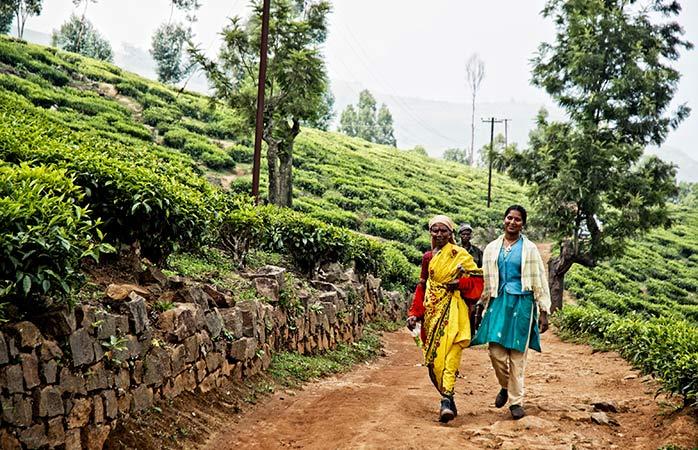 Hindistan Gezilecek Yerler: Hindistan'da Görülmesi Gereken Yerler