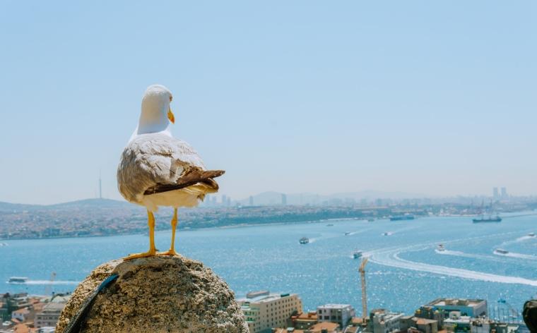 İstanbul'da nerede kalınır? İstanbul konaklama önerileri